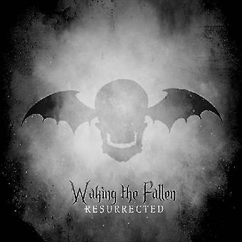 Avenged Sevenfold - Waking the Fallen [CD] USA import