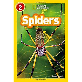 Hämähäkkejä: Tason 2 (National Geographic lukijat) (National Geographic lukijat)