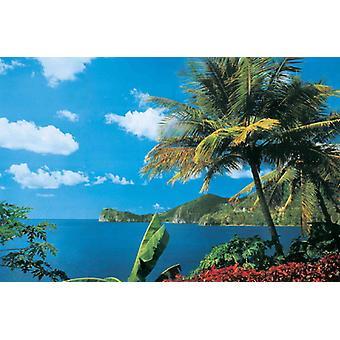 Behang muurschildering St. Lucia