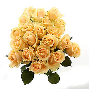 Bouquet from Botanicly – beautiful yellow bouquet of roses, big – Height: 60 cm, 20 branches