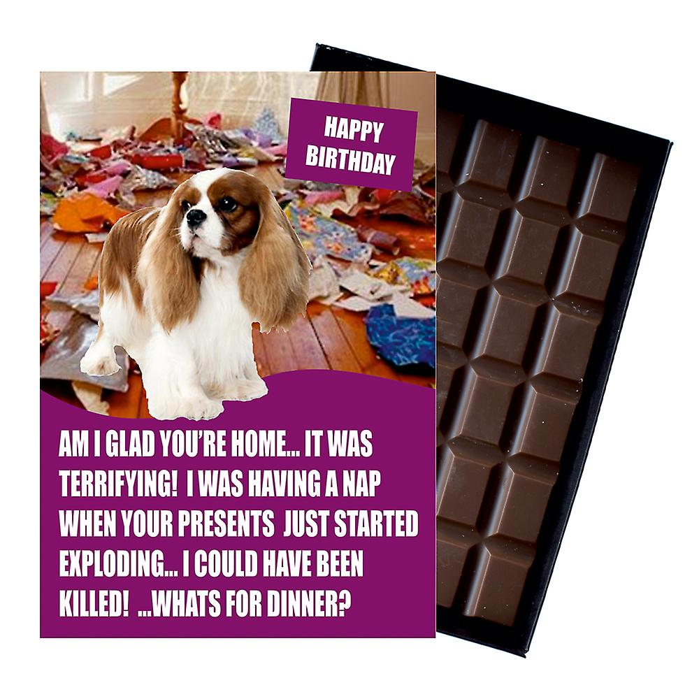 Cavaliar King Charles Spaniel Funny Birthday Gifts For Dog Lover Chocolate Greeting Card Present