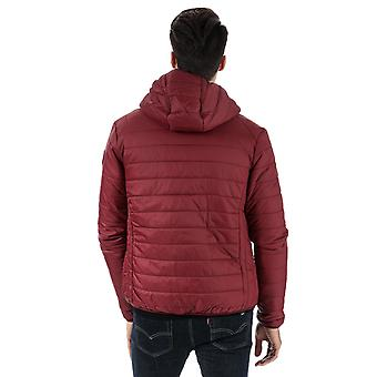 Mens Bear Max Grizzly Hooded Puffer Jacket In Port
