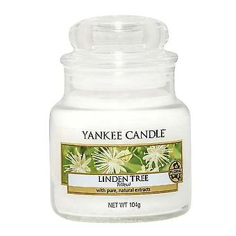 Yankee Candle Small Jar Candle Linden Tree