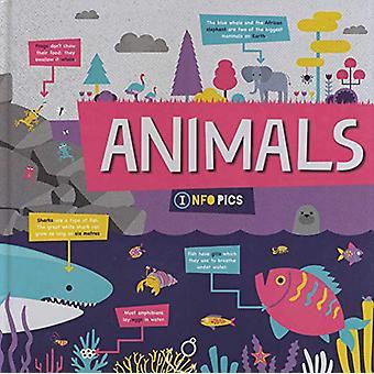 Animals by Harriet Brundle - 9781786379146 Book