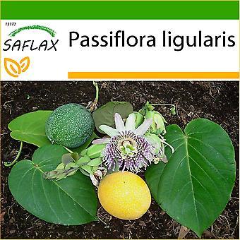 ספלקס-20 זרעים-עם אדמה-Granadilla מתוק-גראדל-גראדילה-גראדילה-Süße גראדילה
