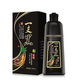 Black Hair Color Dye Shampoo (black)