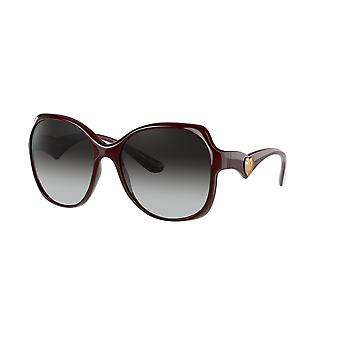 دولتشي وغابانا DG6154 32858G شفافة بوردو / رمادي النظارات الشمسية التدرج
