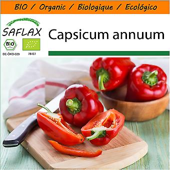 Saflax - Garden i Bag - 20 frø - organisk - Sweet Pepper - California Wonder Red - BIO - Poivron - California wonder - Rouge - BIO - Peperone - California Wonder - rød - Ecológico - paprika - California Wonder - Rojo - Paprika - California Wonder - Rot