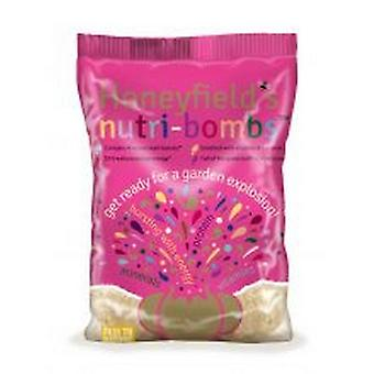 Honeyfields Nutri Bombs Bird Treat