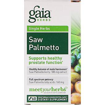 Gaia Herbs, Saw Palmetto, 60 Vegetarian Liquid Phyto-Caps
