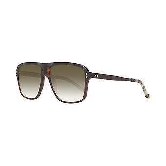 Men's Sunglasses Hackett HSB86814357 Brown (ø 57 mm)