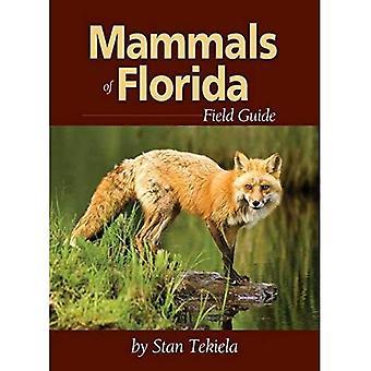 Däggdjur av Florida Field Guide