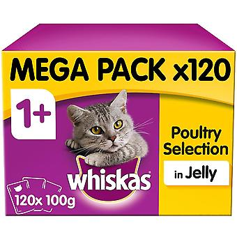 120 x 100g Whiskas 1+ Adult Wet Cat Food Pouches Mixed Poultry Jelly