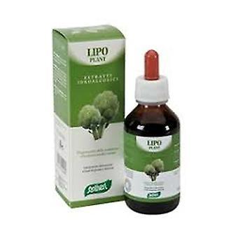 Lipo plant # 04 100 ml