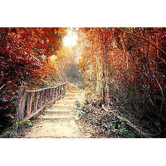 Mural de papel de parede Fantasy Forest em Cores Surreais de Outono