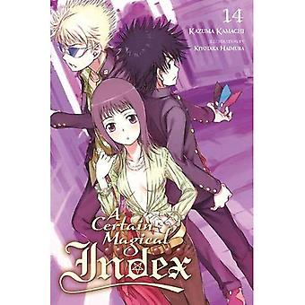 Un Certain Magical Index, Vol. 14 (roman léger)