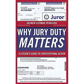 Why Jury Duty Matters: A Citizen 's Guide to Constitutional Action