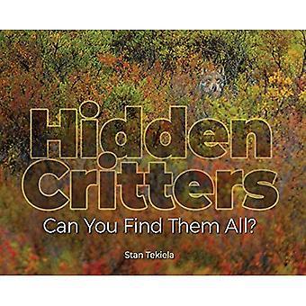 Bestioles cachés: Vous pouvez les trouver tous? (Livres d'images de la faune)