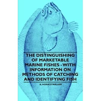 The Distinguishing of Marketable Marine Fishes  With Information on Methods of Catching and Identifying Fish by Walker & A. Horace