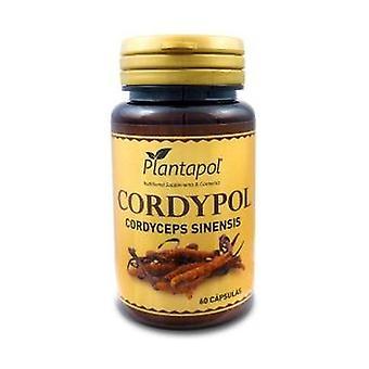 Cordypol 60 kapselia