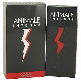 Animale Intense Eau De Toilette Spray By Animale 3.4 oz Eau De Toilette Spray
