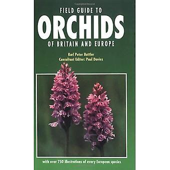 Field Guide to Orchideen in Großbritannien und Europa