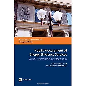 Beschaffung von Energieeffizienz-Dienstleistungen: Lehren aus den internationalen Erfahrungen