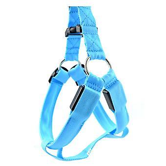 Dog Safety Blue Reflective Flashing Collar Belt Strap Cycling Walking Running
