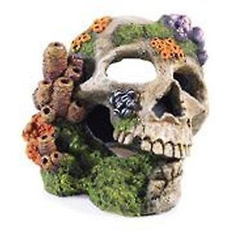 Classic For Pets Skull 195mm (Rybki , Dekoracja , Dekoracja)