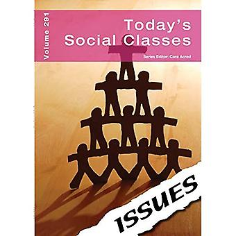 Today's Social Classes: 291 (Issues Series)