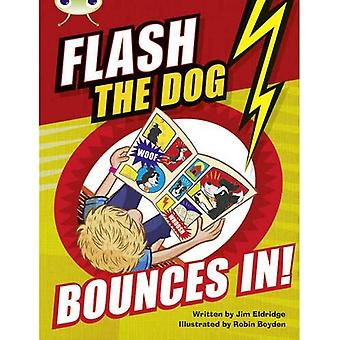 BC Brown A/3C Flash the Dog Bounces In! (BUG CLUB)
