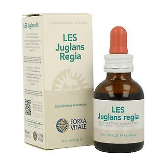 LES Juglans Regia 50 ml