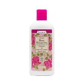 Shampoing à la rose musquée bio 250 ml