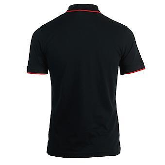 Roberto Cavalli Brand Crest Black Polo Shirt