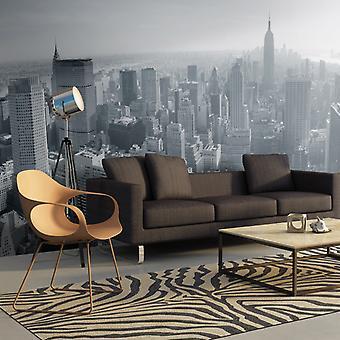 Fotomurale XXL - Panorama di New York in bianco e nero