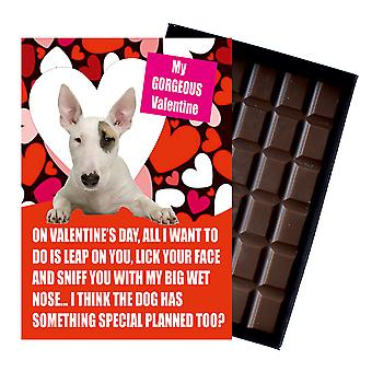 Bull Terrier Gift for Valentines Day Presents For Dog Lovers Boxed Chocolate