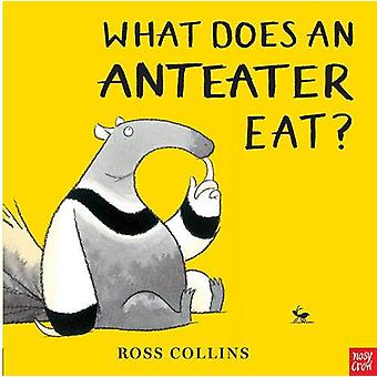 What Does An Anteater Eat by Ross Collins