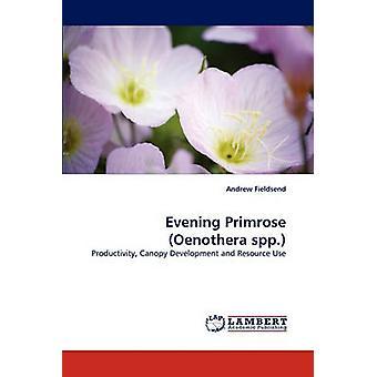 Evening Primrose Oenothera Spp. by Fieldsend & Andrew