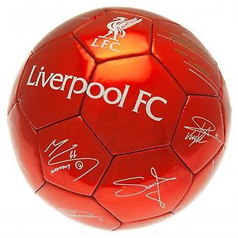 Liverpool Football Signature RD