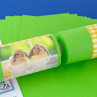 8 Lime Green Teacup Bunnies Easter Cracker Craft Kit - Make & Fill Your Own DIY