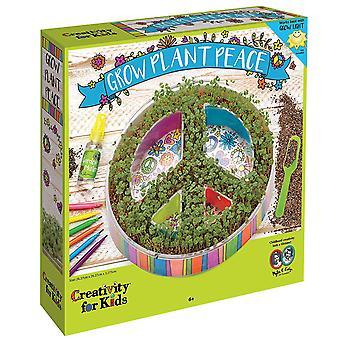 Kit di coltivazione di creatività per bambini pianta 6105 pace