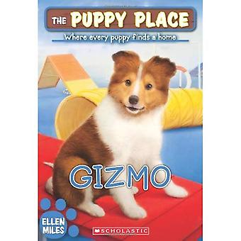 Gizmo (Place chiot)