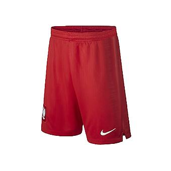 Nike Stad AW Short 940449611 training all year men trousers