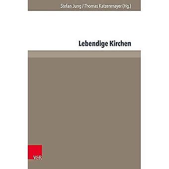Lebendige Kirchen: Interdisziplinare Denkanstosse Und Praktische Erfahrungen (Beheer - Ethik - Organisatie)