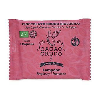 Organic raspberry dark chocolate bar (15 pcs expo) 30 g