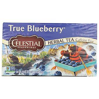Taivaalliset mausteet Tea Grn Zingr True Blubry, 6 X 20 pussin kotelo