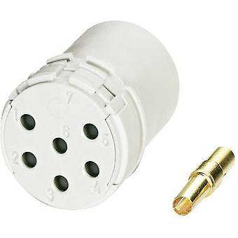 Coninvers 1599343 RC-12S1N8D0000 0.14 - 0.56 mm²