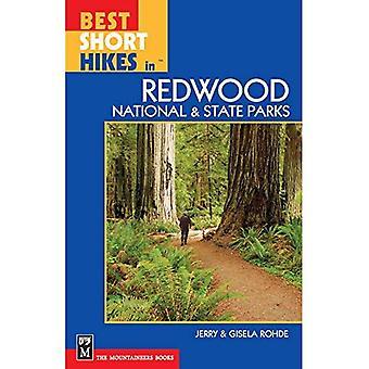 Bästa korta vandringar i Redwood nationella och parker stat