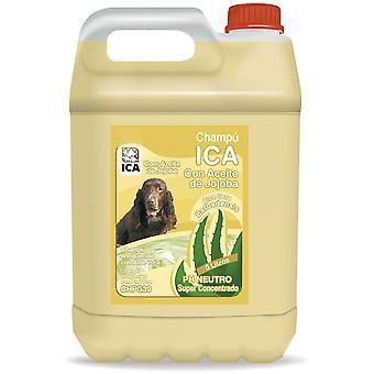 Ica Shampoo A Jojoba 5 Lts Aloe Vera (Dogs , Grooming & Wellbeing , Shampoos)