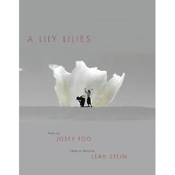 Little Million Doors by Chad Sweeney - 9781643620008 Book